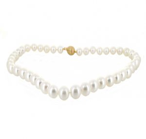 autore south sea pearl strand necklace | B19711