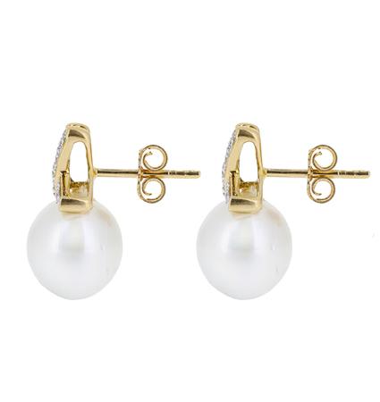 Yellow Gold South Sea Pearl Earrings | B20660(1)