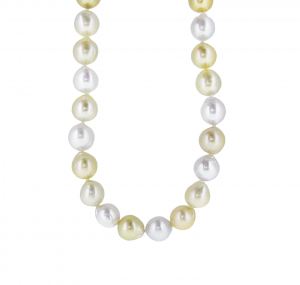 White And Gold South Sea Pearl Strand | B16320