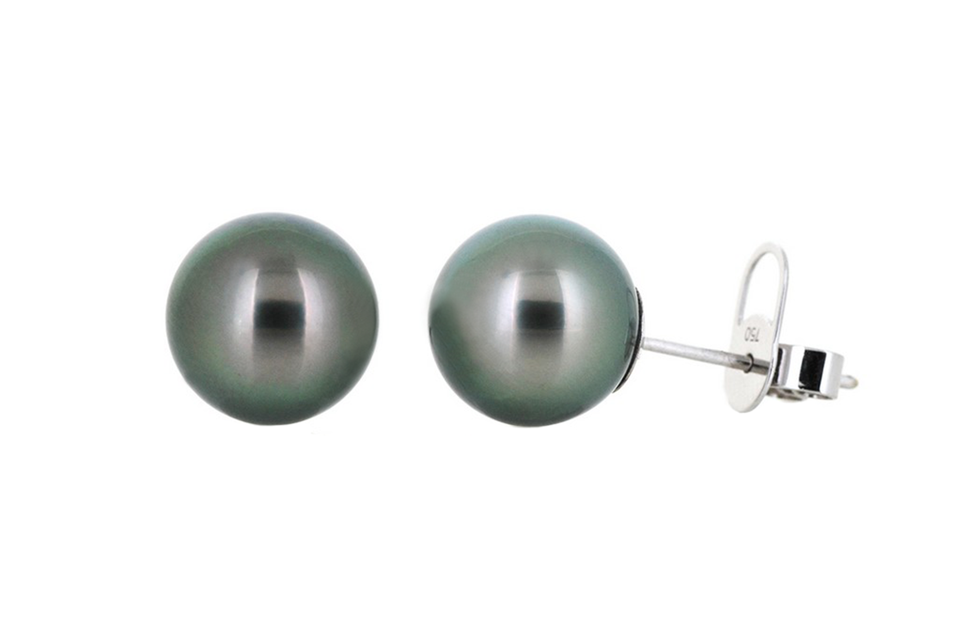 Black South Sea Pearl Stud Earrings | B19546