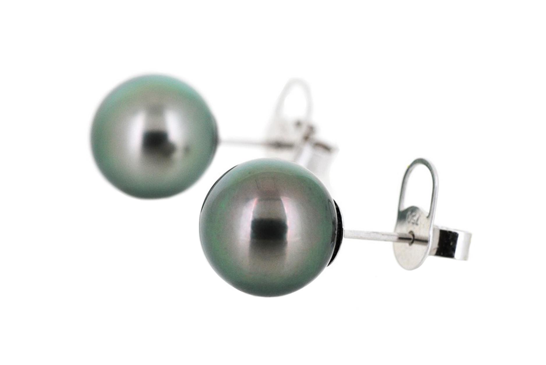 Tahitian South Sea Pearl Stud Earrings | B19546
