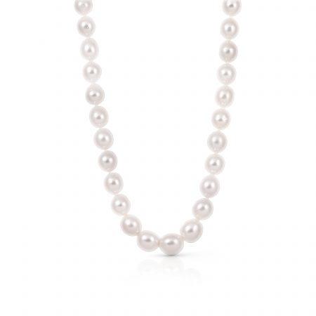 Autore South Sea Pearl Strand Necklace | B21502